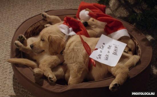 рождественские фильмы список