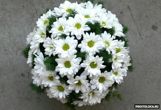 свадебный букет из хризантоем 2
