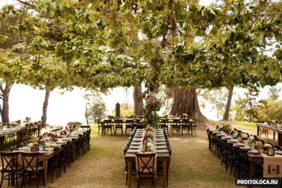 свадьба в стиле властелин колец в лесу