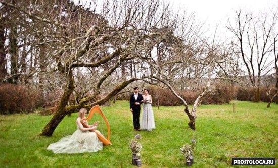 свадьба в стиле властелин колец 2