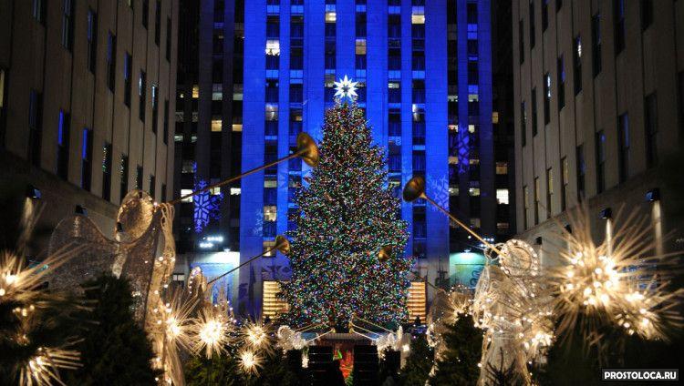 рождественская ель нью йорка