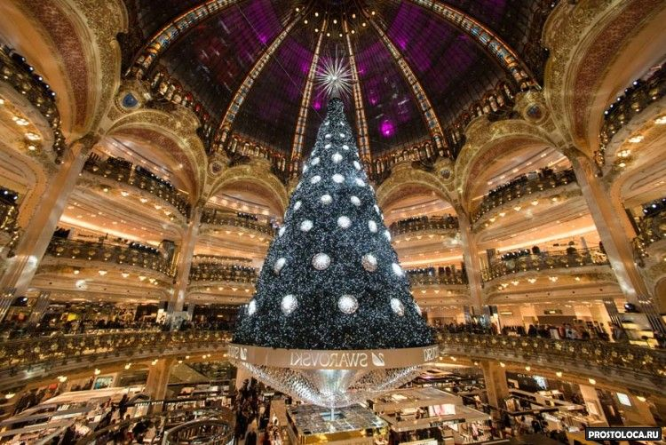 рождественская ель парижа