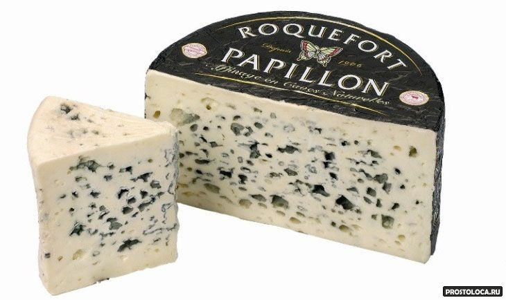 Лучшие сорта сыров: посадка и уход