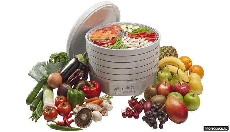 как выбрать сушилку для овощей 2
