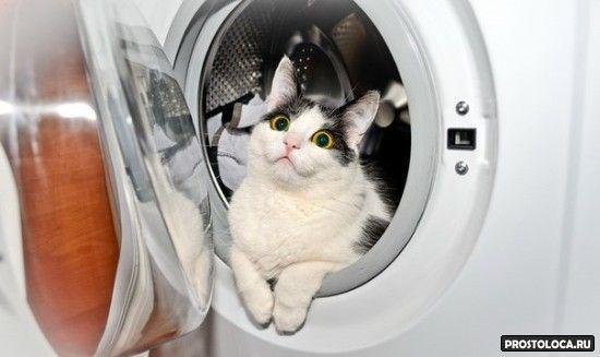 шумная стиральная машина